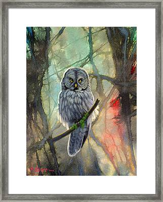 Great Grey Owl In Abstract Framed Print by Paul Krapf