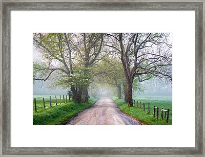Great Smoky Mountains National Park Cades Cove Country Road Framed Print by Dave Allen