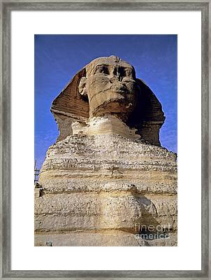 Great Sphinx Of Giza Framed Print by Adam Sylvester