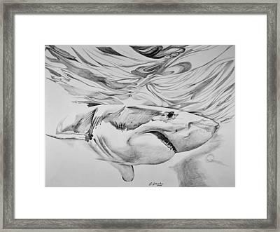 Great White Framed Print by Edward Johnston