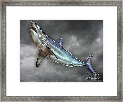 Great White Framed Print by Gregory Dyer