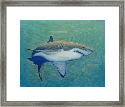 Great White Framed Print by Nathan Ledyard