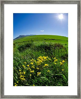 Green Acres Framed Print by Aaron S Bedell