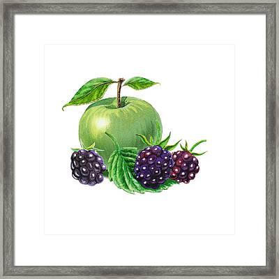 Green Apple With Blackberries Framed Print by Irina Sztukowski