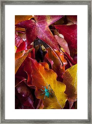 Green Bug Framed Print by Garry Gay