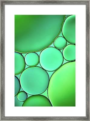 Green Drops Framed Print by Cora Niele