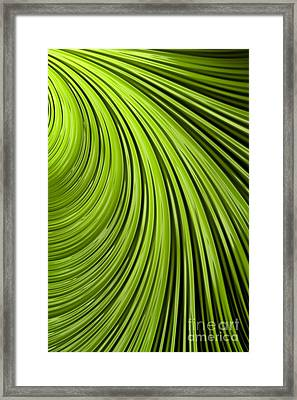 Green Flow Abstract Framed Print by John Edwards