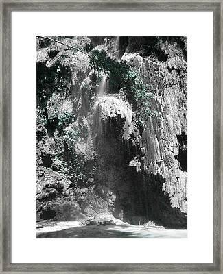 Green Leaves Framed Print by Duane Blubaugh