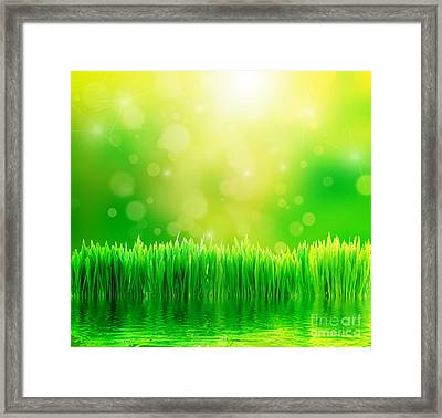 Green Nature Background With Fresh Grass Framed Print by Michal Bednarek