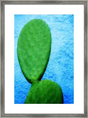 Green On Blue Framed Print by Carol Leigh