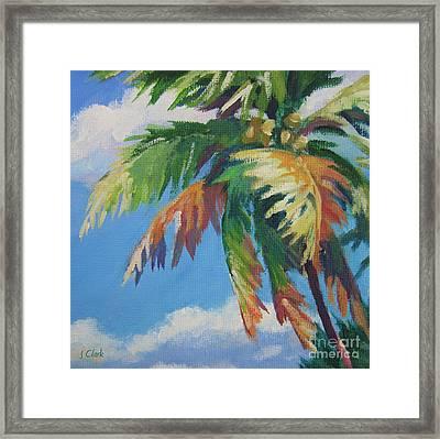 Green Palm  Framed Print by John Clark