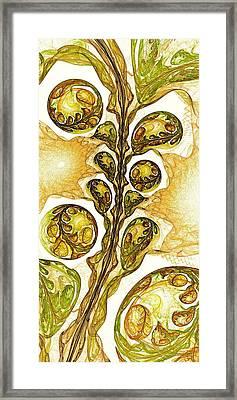 Green Plant Framed Print by Anastasiya Malakhova
