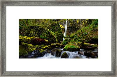 Green Seasons Framed Print by Chad Dutson