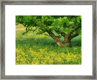 Green Spring Meadow With Yellow Flowers And Tree - Digital Painting Framed Print by Matthias Hauser