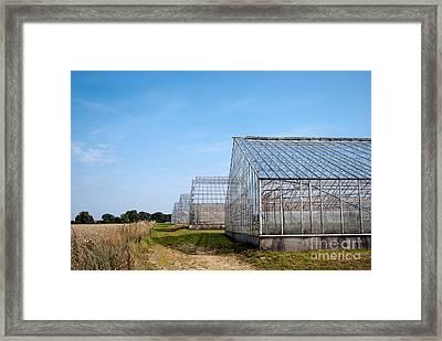 Greenhouses Framed Print by Antony McAulay