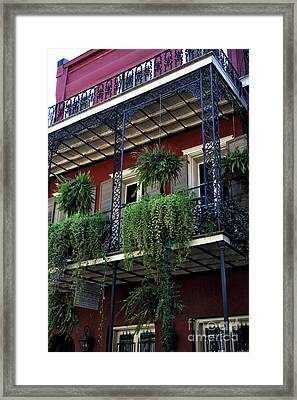 Greens In New Orleans Framed Print by John Rizzuto