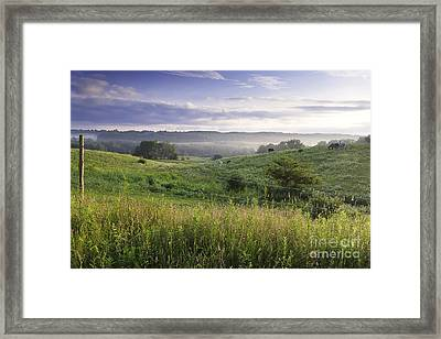 Greet The Day Framed Print by Michele Steffey