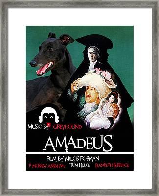 Greyhound Art Canvas Print - Amadeus Movie Poster Framed Print by Sandra Sij