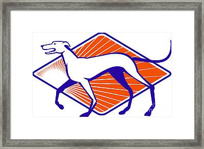 Greyhound Dog Walking Side Retro Framed Print by Aloysius Patrimonio