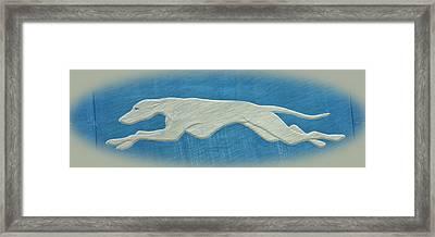 Greyhound II Framed Print by Sandy Keeton