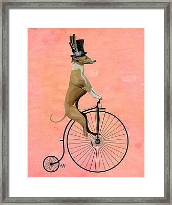 Greyhound Pennyfarthing Black Framed Print by Kelly McLaughlan