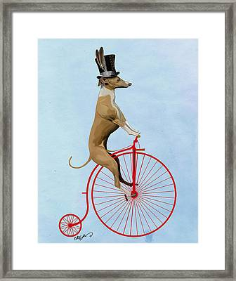 Greyhound Pennyfarthing Red Framed Print by Kelly McLaughlan