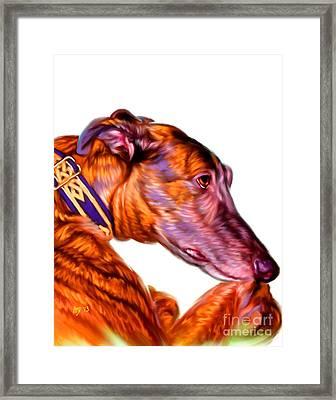 Greyhound Pet Art Framed Print by Iain McDonald