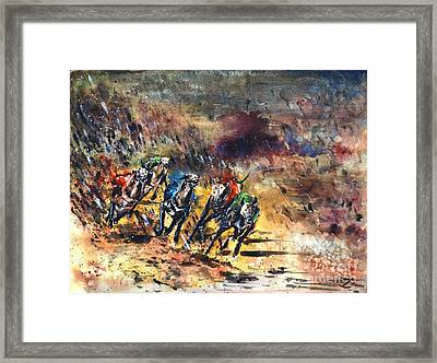 Greyhound Racing Framed Print by Zaira Dzhaubaeva