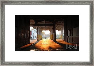 Greyhound Sunset Framed Print by Howard Tenke