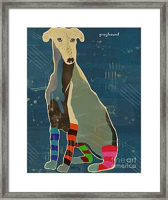 Greyhound  Framed Print by Bri B