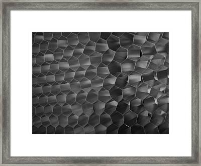 ...grid 2... Framed Print by Charles Struse Sr