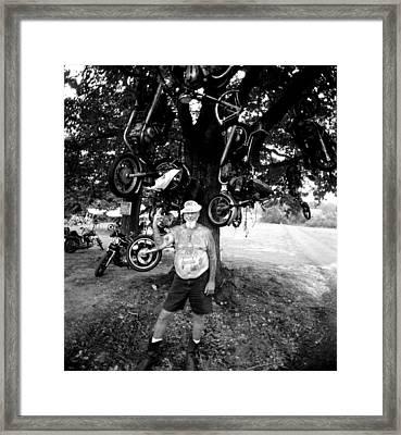 Grizz Tree Framed Print by Doug Barber