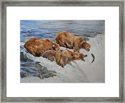 Grizzlies Fishing Framed Print by Juan  Bosco