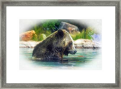 Grizzly Bear Enjoying A Dip In The Water Fade To White Version Framed Print by Jim Fitzpatrick