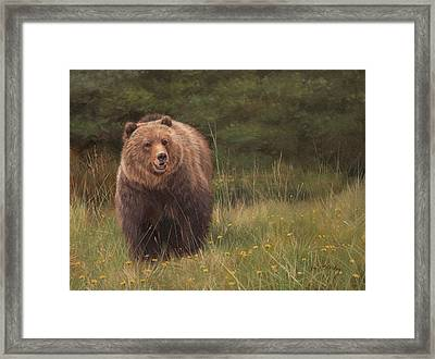 Grizzly Framed Print by David Stribbling
