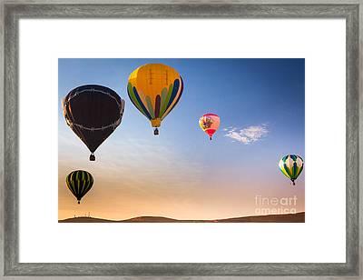 Group Of Balloons Framed Print by Inge Johnsson