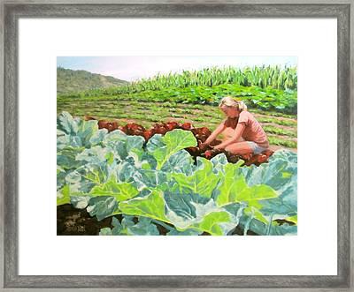 Growing Hope Framed Print by Karen Ilari