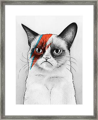 Grumpy Cat As David Bowie Framed Print by Olga Shvartsur