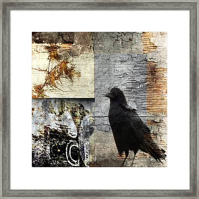 Grunge Crow Collage Framed Print by Gothicolors Donna Snyder