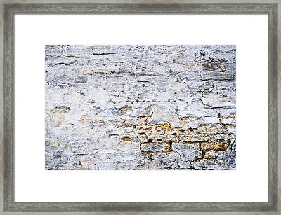 Grunge Wall Framed Print by Elena Elisseeva