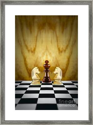 Guardian Concept Framed Print by Colin and Linda McKie