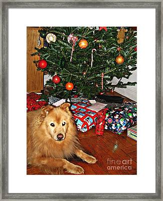 Guardian Of The Christmas Tree Framed Print by Sarah Loft