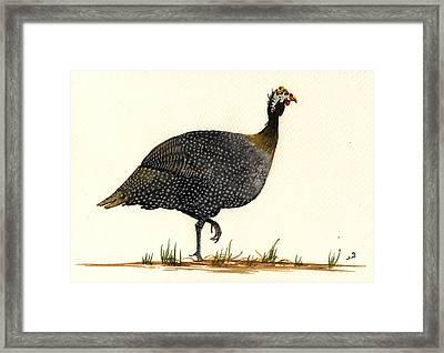 Guinea Fowl Framed Print by Juan  Bosco