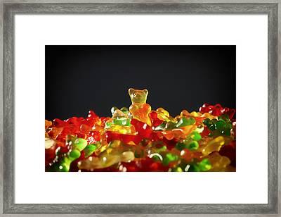 Gummi Bears Framed Print by Mountain Dreams
