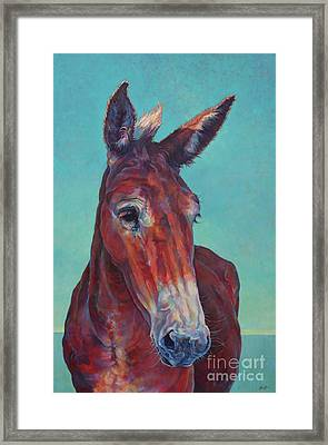 Gunthor Framed Print by Patricia A Griffin