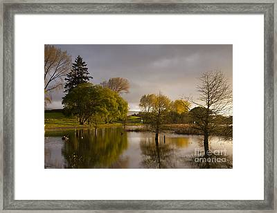 Guy Roe Reserve Lake Rerewhakaaitu Rotorua New Zealand Framed Print by Colin and Linda McKie