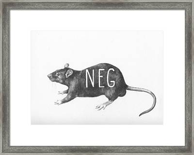 Gym Rat Framed Print by Alexander M Petersen