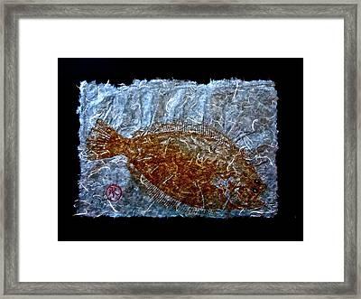 Gyotaku - Flounder - Fluke - Summer Flounder Framed Print by Jeffrey Canha
