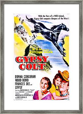 Gypsy Colt, Us Poster Art, From Left Framed Print by Everett