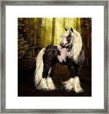Gypsy Gold Framed Print by Shanina Conway